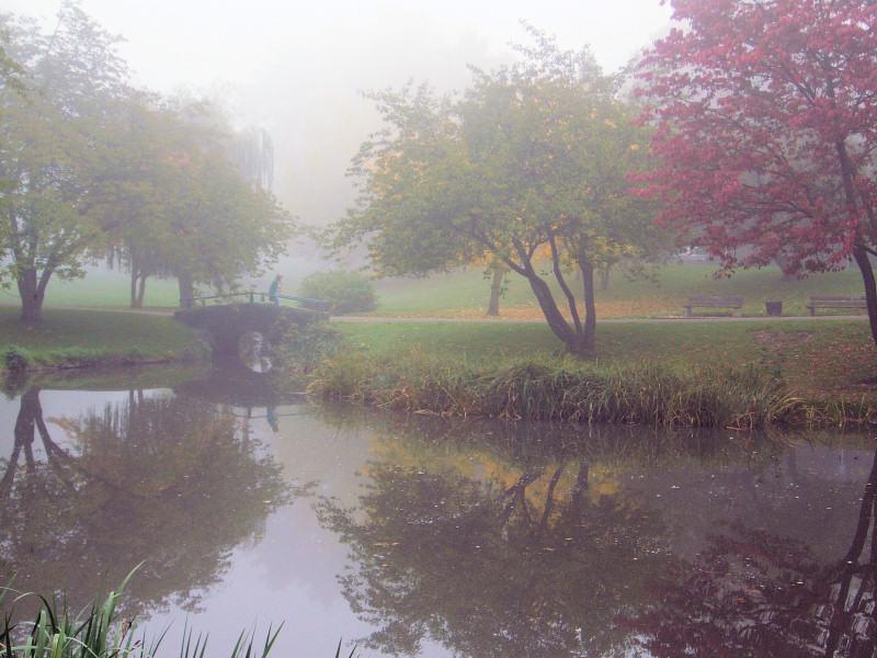 Nebel im Walkm�hltal
