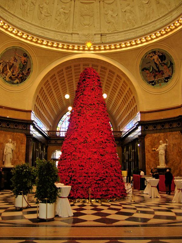 Weihnachtsbaum aus weihnachtssternen