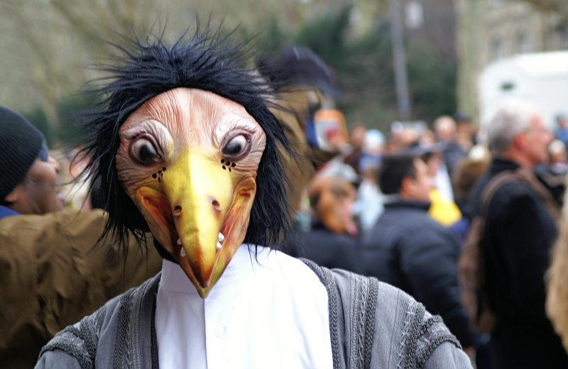 ein seltsamer Vogel...