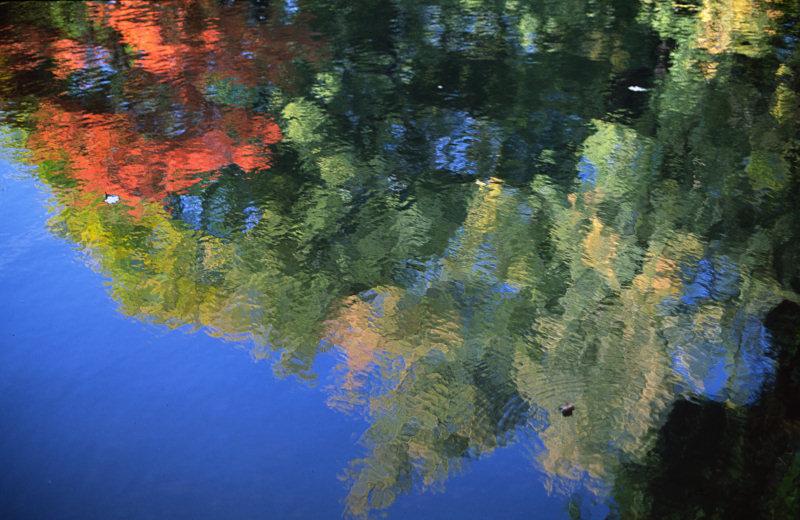 Herbst-Reflektion
